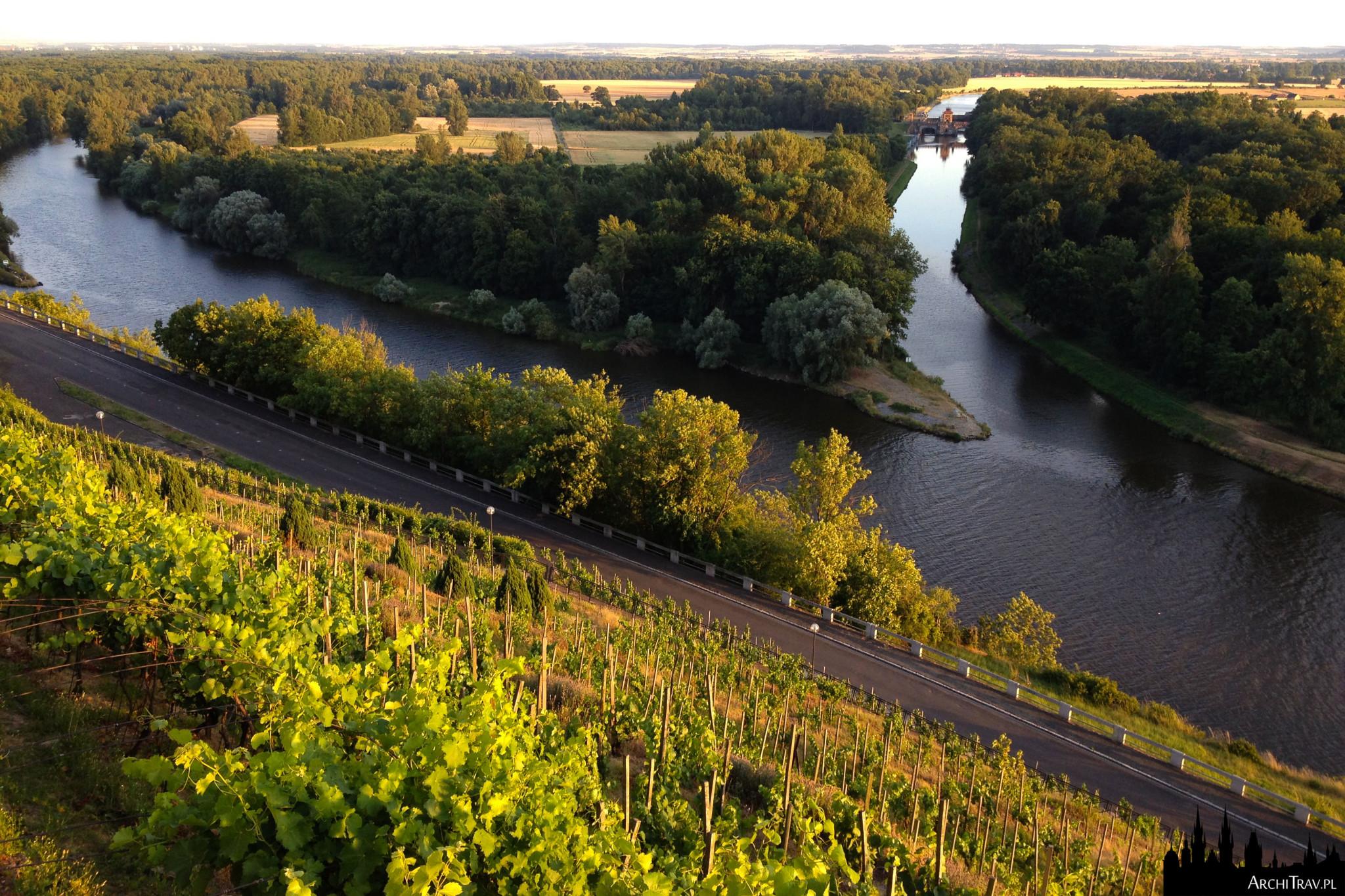 widok na połączenie dwóch rzek - Łaby i Wełtawy, malownicze zielone tereny z winnicami, Mielnik w Czechach