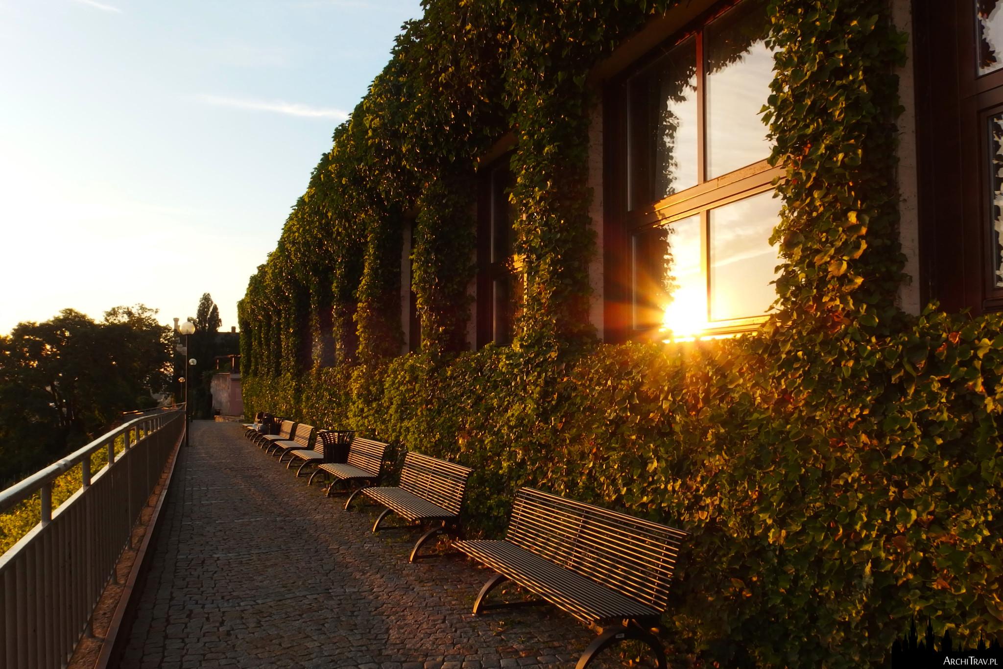 pasażyk z ławkami i budynkiem obrośniętym bluszczem przy zachodzie słońca bez żadnych ludzi