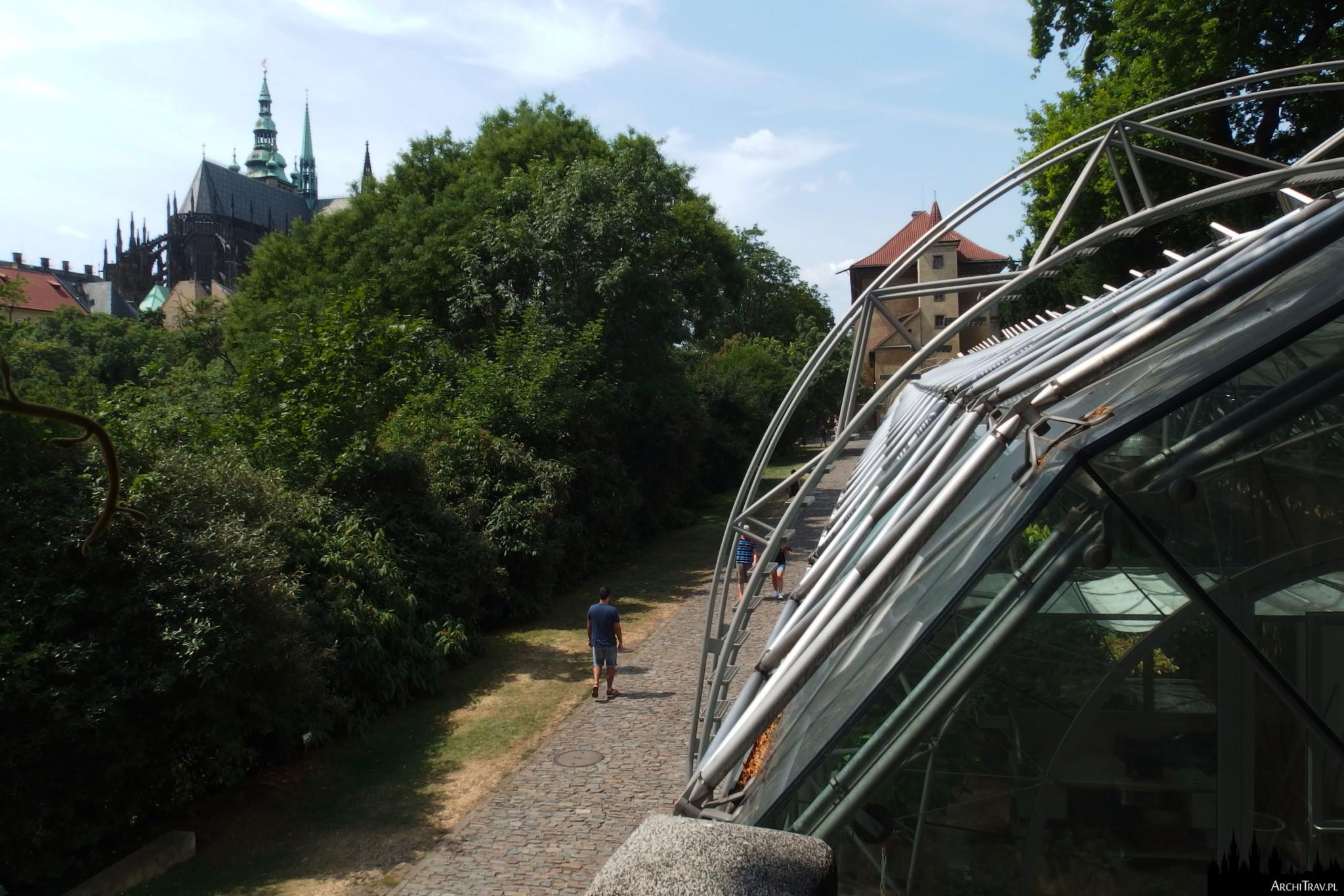 po prawej na pierwszym planie kawałek Oranżerii (Ogrody Królewskie w Pradze), nowoczesnego budynku ze stalowymi i szklanymi elementami, w dole ścieżka, obok niej bujna zieleń, w oddali strzelista sylweta katedry św. Wita