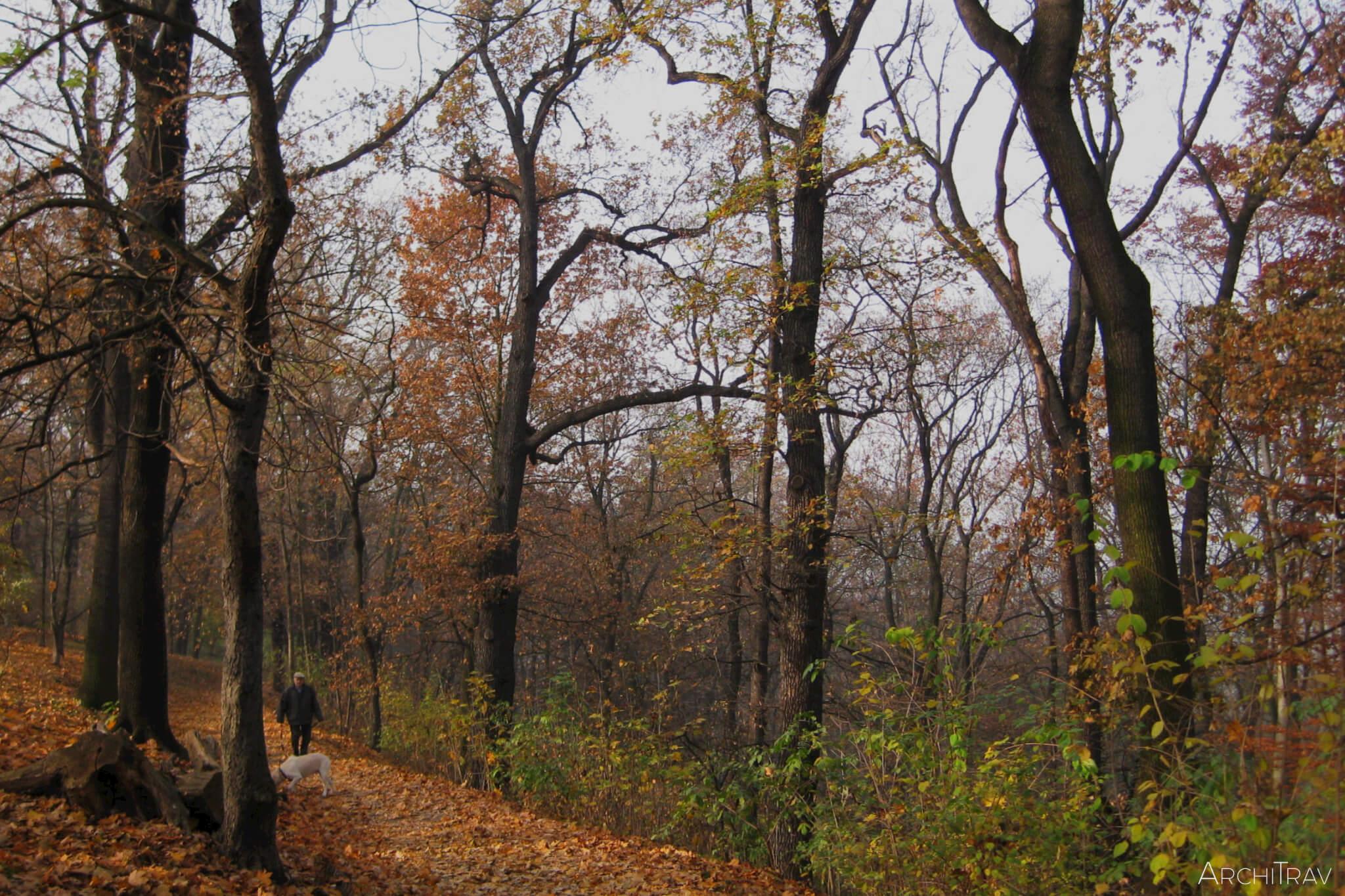 Park Stromovka jesien